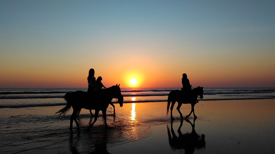Riding the Surf on Horseback