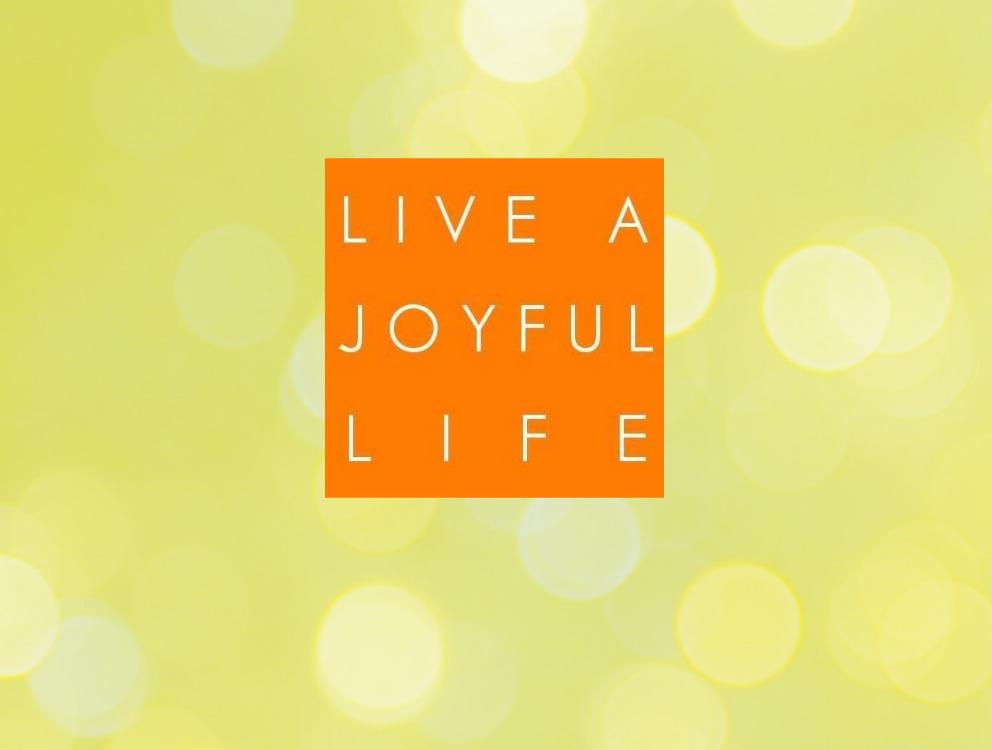 Emily Stulman Klein of Live a Joyful Life on Marital Success