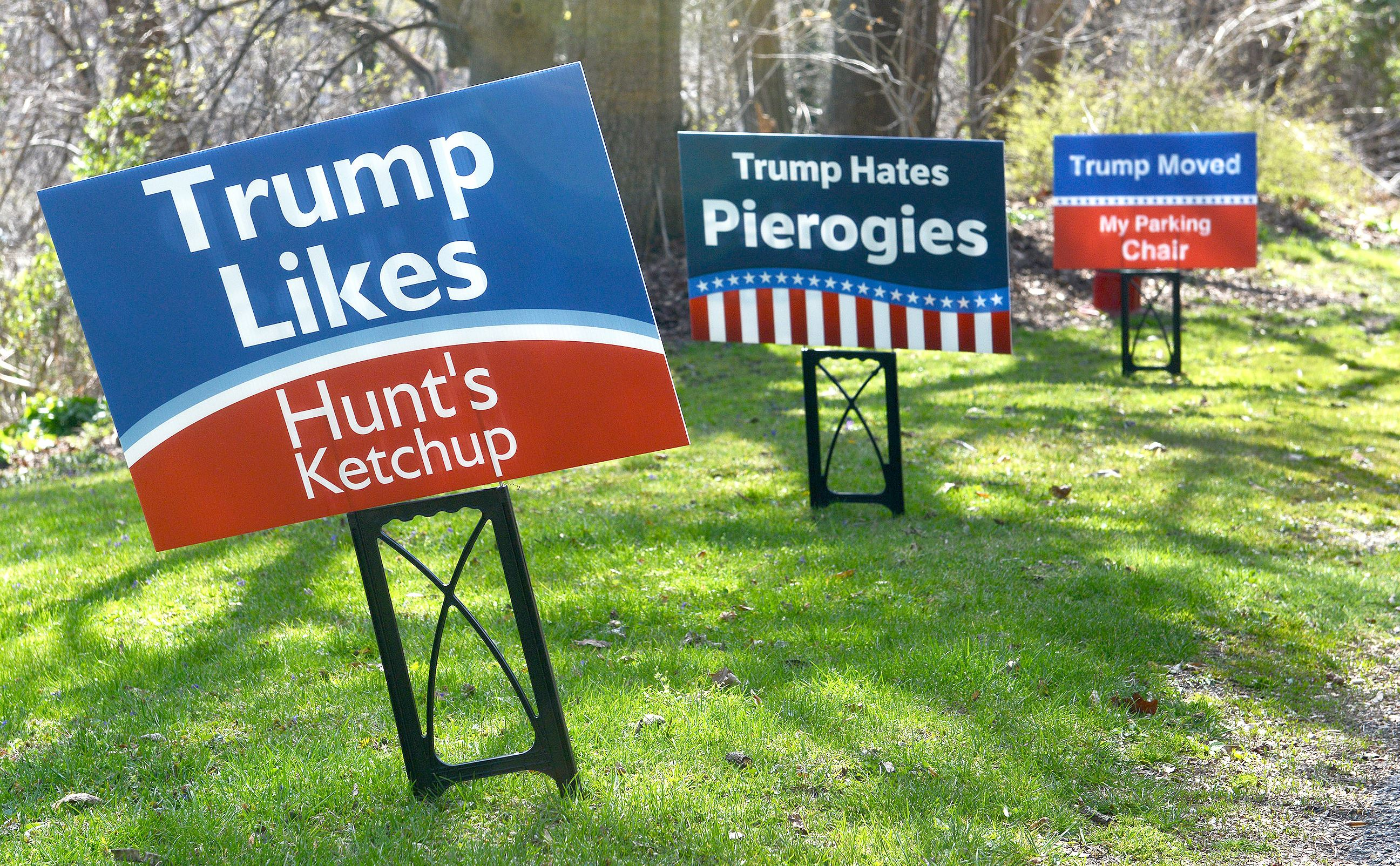 A Country Divided by Yard Signs