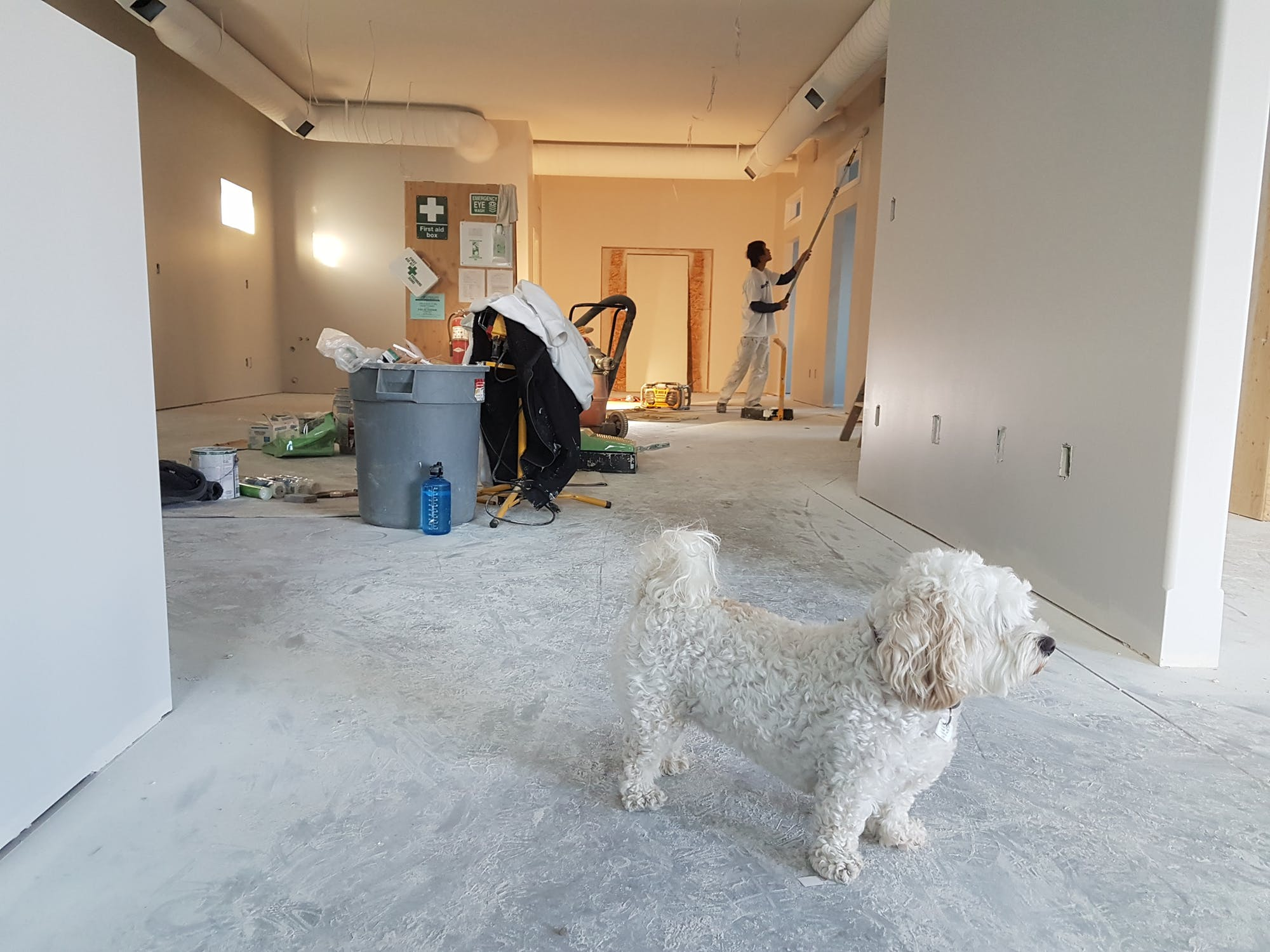 Relocate or Renovate: Reasons to Stay Put and Improve Your Home